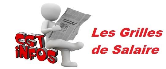Grilles de salaire syndicat cgt du conseil d partemental - Grille indiciaire agent de maitrise principal ...